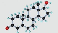 מולקולה של טסטוסטרון (הדמיה)