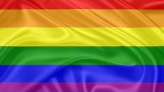 דגל הקהילה הגאה (צילום: אילוסטרציה)