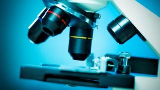 ביופסיה, מיקרוסקופ אלקטרוני (צילום: אילוסטרציה)
