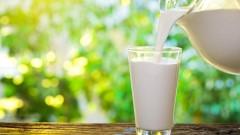 חלב (צילום: אילוסטרציה)